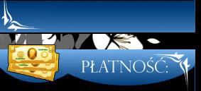 platnosc